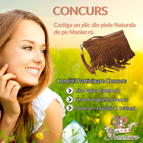 plic_concurs_manier